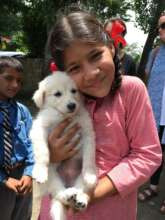 Indian school girl at DAR education program