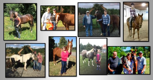 Some of the 63 adoptions in 2016!