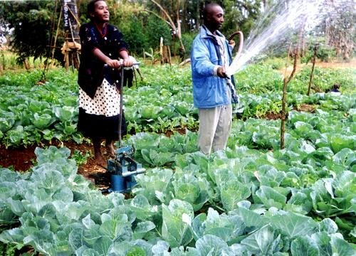 New Technology for Farmers in Africa