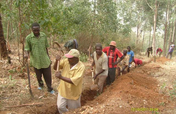 Supply safe water to a Cameroonian farming village