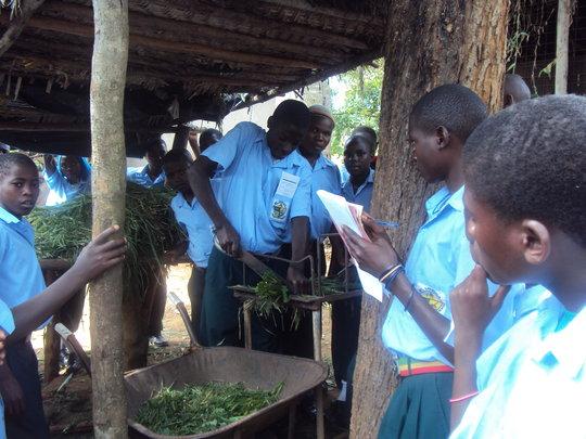 Kitovu Mobile Farm School
