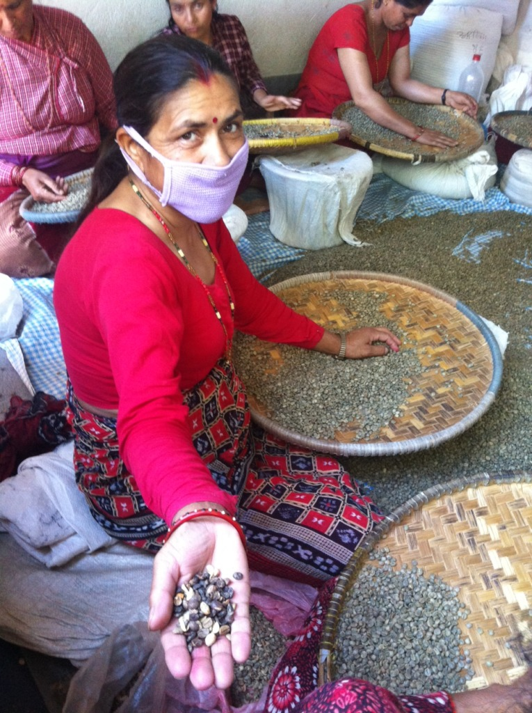Sorting of Coffe Beans by Hand