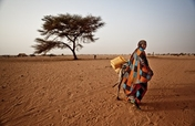 Food Crisis in West Africa