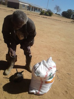 Old man collects bag of maize after walking 44km