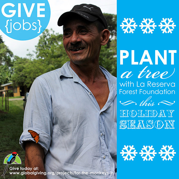 GIVE {jobs}