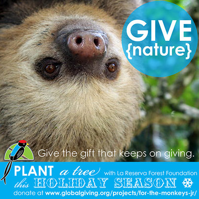 GIVE {nature}