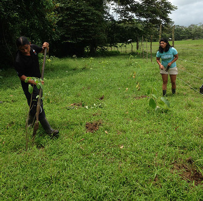 Jimmy and Yami planting Brugo's trees