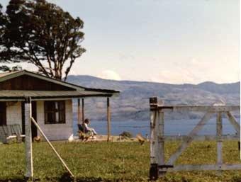 La Reserva 1984, look no trees anywhere