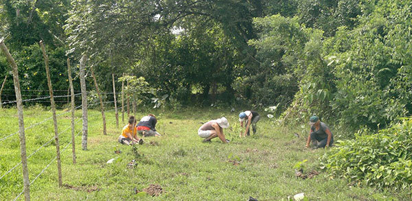 Women planting, HOT