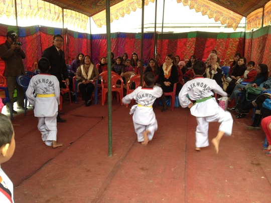 Kids performing Taekwando