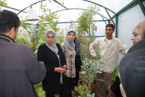 The participants discuss the gardens with trainer.