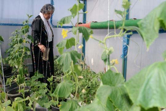 Support women like Hajjar with a rooftop garden