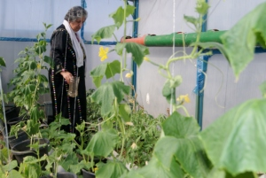 Support women like Hajjar with a rooftop garden