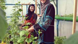 Benefits of rooftop gardens also reach young women