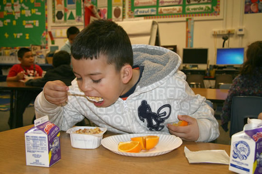 Young Boy Eating Healthy School Breakfast
