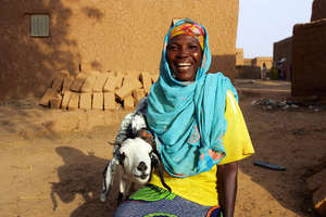 Protecting herds & livelihoods. Photo: Mercy Corps