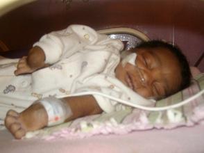 Lucner in our Nursery