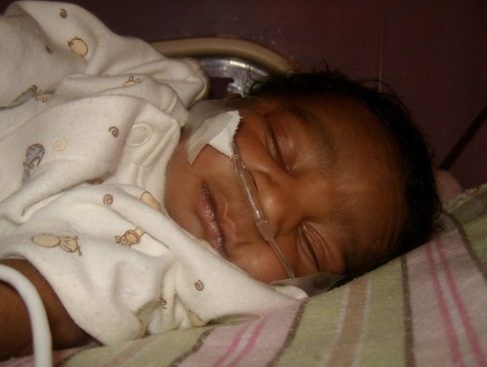 Lucner in our Nursery 3
