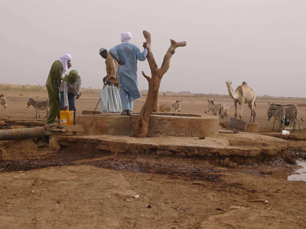 Hunger Relief and Support for Sahel Nomads