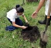 Planting with students from St Louis