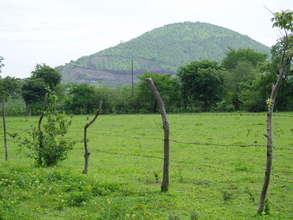 Deforested hillside in Nicaragua