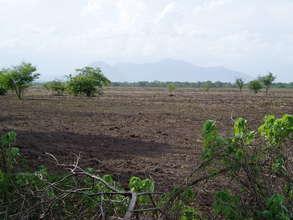 Dry farm field in need of biodiversity