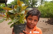Plant 10,000 Trees in Nicaragua
