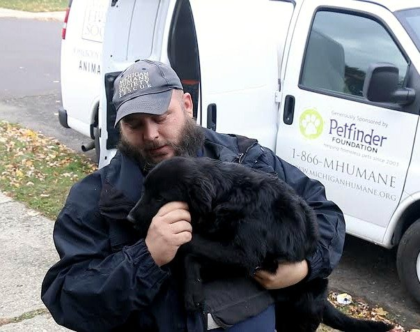 Reports from Petfinder Foundation - GlobalGiving