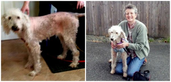 Kira before treatment (left) and with her new mom