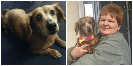 Penny Ann before (left) and with her adoptive mom