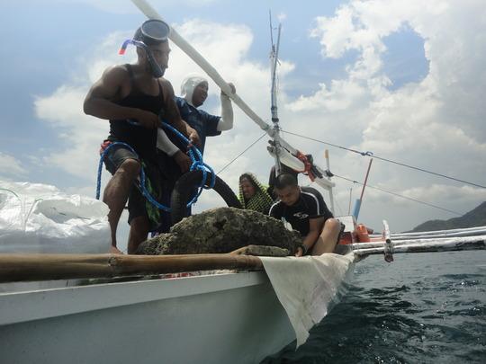 talim bay coastal resources management project