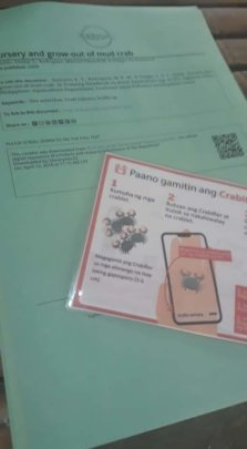 Learning new technology on Crab Growing