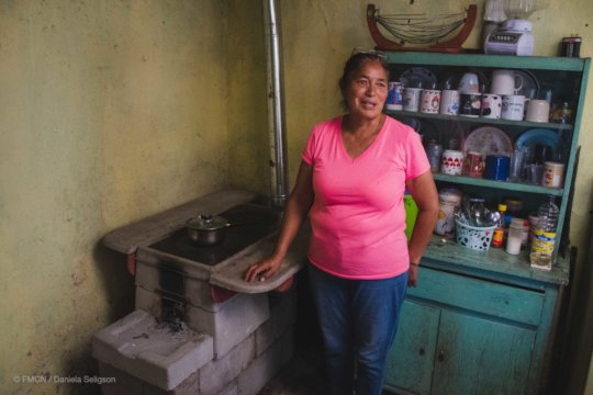Wood-saving stove in Coahuila.