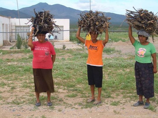 Women carrying firewood