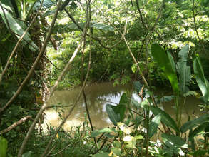 Rio Guacalito