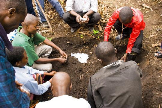 Agronomy work