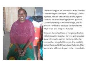 Josinta Nyakato- Ndongo Farmer