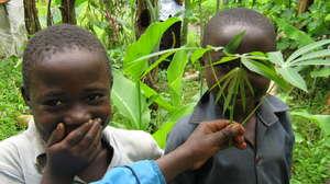 Help Ugandan Organizations Help Themselves