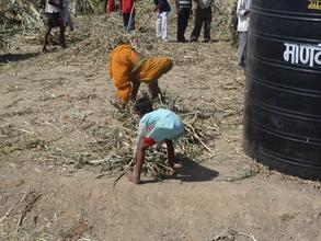Mann Deshi Farmer on cattle camp