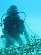 La Caleta fishermen cleaning a coral nursery