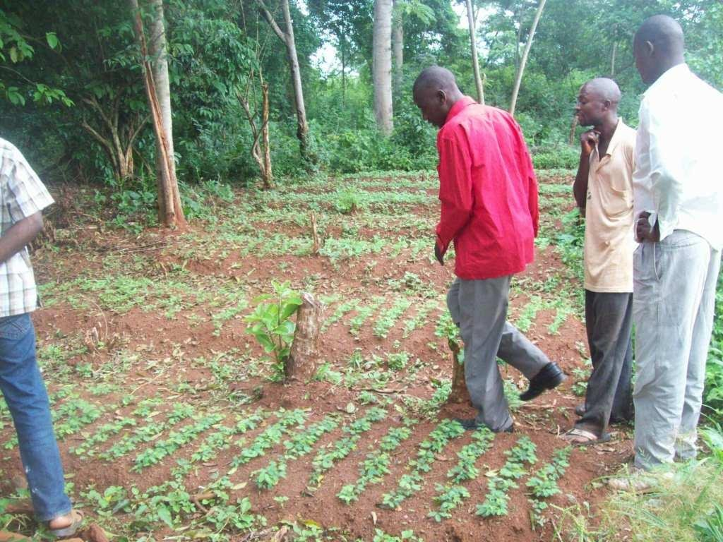 Our team with local farmers at a New Nursery Site
