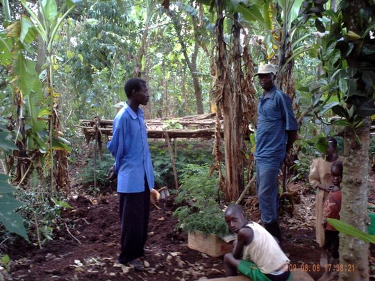 Social Forestry in Uganda: Setting a Precedent