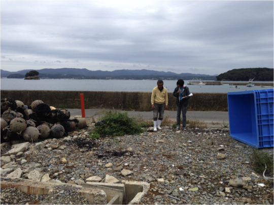 Tsunomiya site inspection