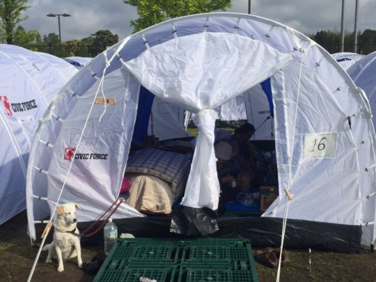 A pet-friendly Peace Winds shelter
