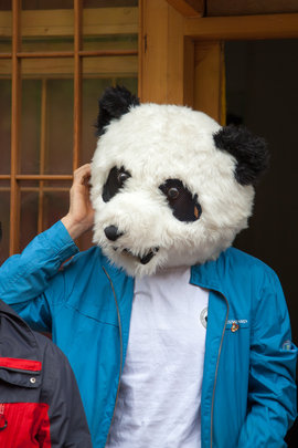 It's easy to get a big head helping pandas...