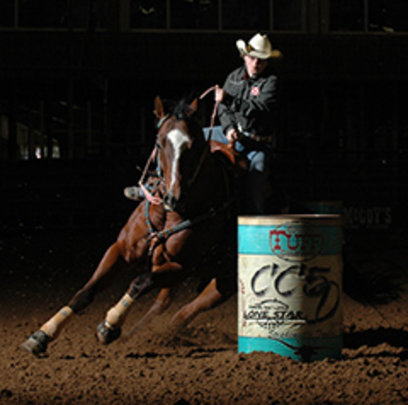 Rescue-Rehab-Retrain-Rehome Horses Healing People