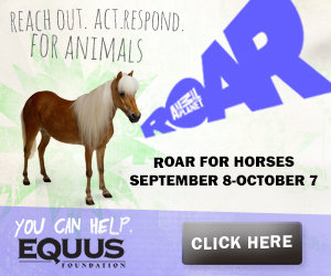 www.equusfoundation.org/ROAR