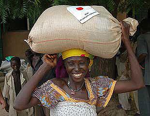 A Nigerien woman transports food