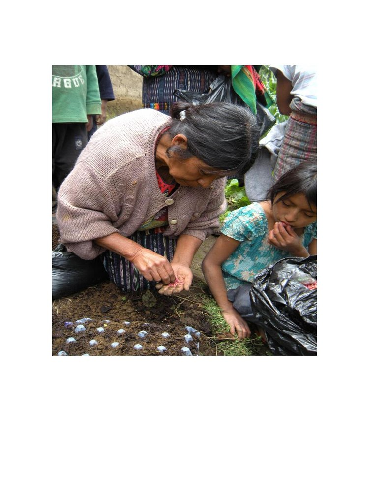 Candelaria Using Egg Cartons to Grow Seedlings