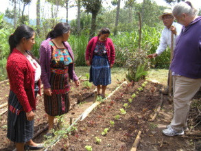 Don Manuel explains how to plant rotating crops
